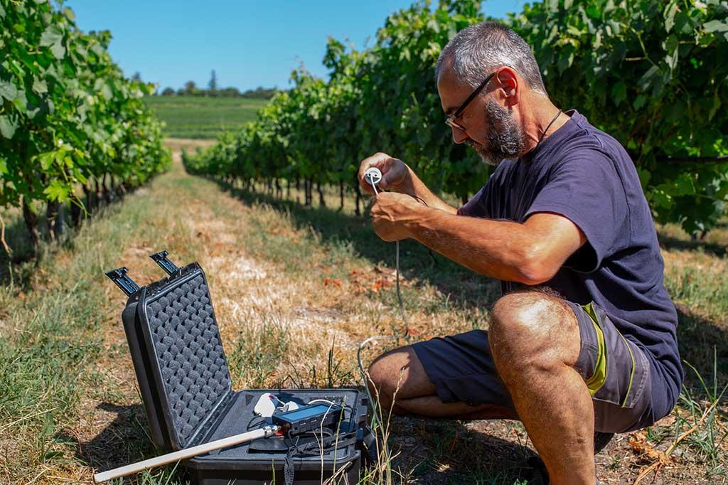 Monitoraggio Cantine Vitivinicole Installazione Sensori | SITIP TELECOMUNICAZIONI