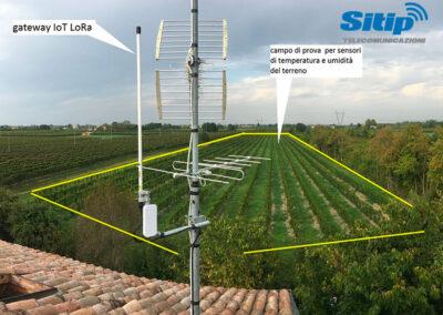 Schema Impianto di Monitoraggio vigna con IoT a Rio Saliceto, Reggio Emilia | SITIP TELECOMUNICAZIONI