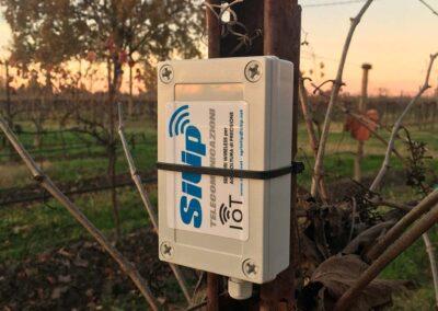 Sensore IoT per l'Agricoltura | SITIP TELECOMUNICAZIONI